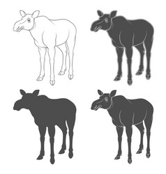 Set of black and white images with a moose vector