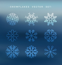 Snow flakes set collection vector