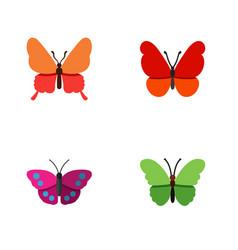 Flat moth set of archippus milkweed monarch and vector