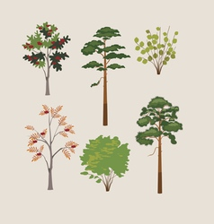 Forest trees and bushes vector