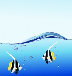 Water bubble and angel fish vector