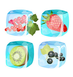 Fresh strawberry healthy mango black and red vector