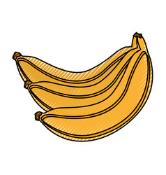 Banana fresh fruit icon vector