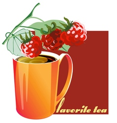 Favorite tea raspberry vector