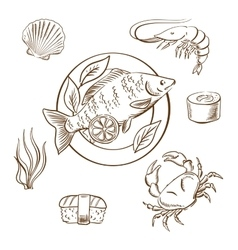 Seafood sketches with fish sushi crab and shrimp vector
