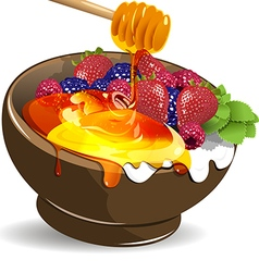 Berries yogurt and honey vector image vector image