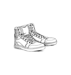 Sketch shoes vector image vector image