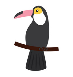 toucan bird tropical on branch image vector image