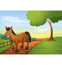 A horse vector