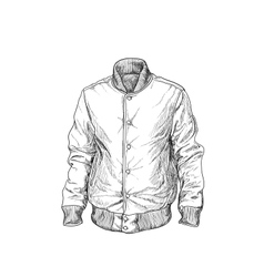Baseball jaket vector image
