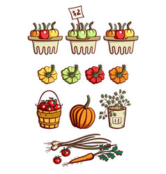 farmers market vegetables collection vector image