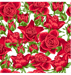 Seamless pattern with red roses beautiful vector