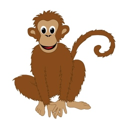 Monkey white background vector