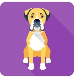 Dog boxer icon flat design vector