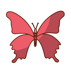 Shadow pink butterfly cartoon vector