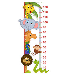 Zoo animal height measure vector