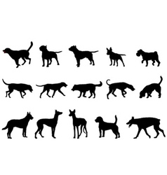 Dogs collection vector
