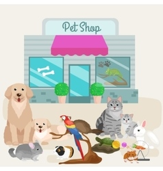Pet shop accessories and vet store vector