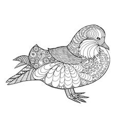 Zentangle stylized mandarine duck vector