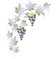 Pattern of vines for page decoration eps10 vector