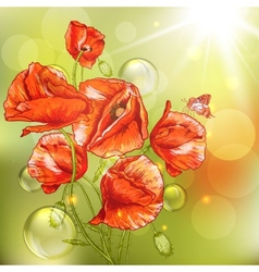Bunch of beautiful red poppy with lights vector