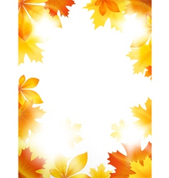 Bright leaves vector image