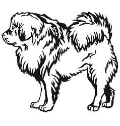 Decorative standing portrait of tibetan mastiff vector