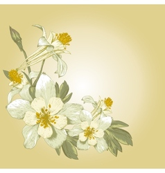 Floral design element with white blooming flowers vector image vector image