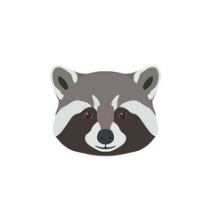 wild raccoon head animal mascot vector image vector image