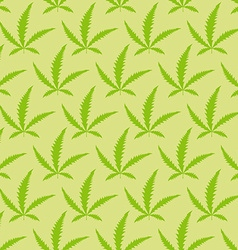 Marijuana leaves seamless pattern narcotic vector