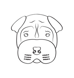 isolated shar pei avatar vector image