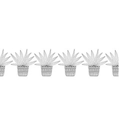 cacti succulents black and white vector image vector image