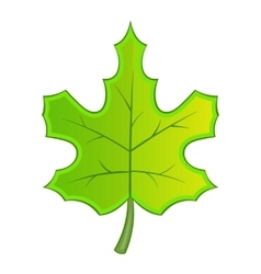 Green maple leave icon cartoon style vector