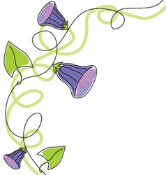 Flowering morning glory vector