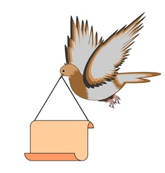 A flying pigeon holding a big blank paper in beak vector