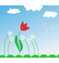 Spring flowers and tulip vector