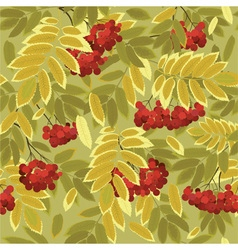 Autumn rowan vector