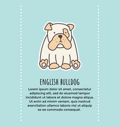 bulldog banner 2 vector image