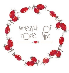 Watercolor wreath of rose hips vector