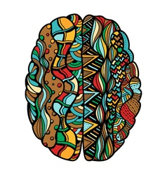 Colored sketchy human brain vector