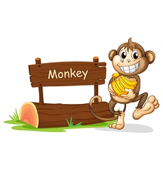 A monkey holding bananas vector image