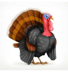 Turkey icon vector