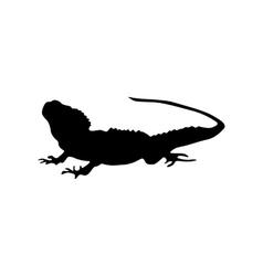 Lizard black silhouette vector image