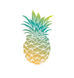 pineapple modern vector image vector image