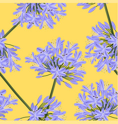 blue purple agapanthus on yellow background vector image