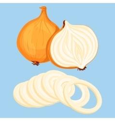 Fresh onion vector