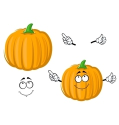 Cartoon happy orange pumpkin vegetable vector