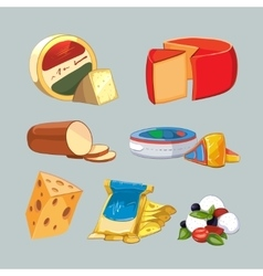 Cheese in packaging set cartoon style vector