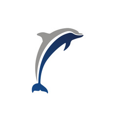 dolphin logo isolated vector image