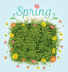 Flowers Spring Season Background vector image vector image